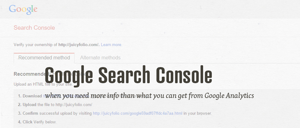 Google Search Console Setting for Better Visitors Survey